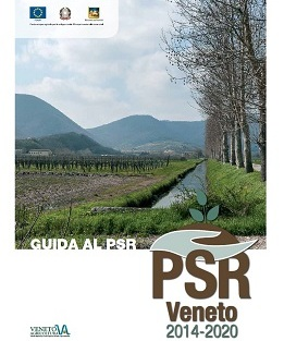 guida PSR